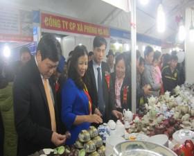 Tuần hàng Việt tại xã Bình Phú huyện Thạch Thất