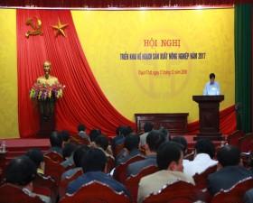 Huyện Thạch Thất triển khai kế hoạch sản xuất nông nghiệp 2017