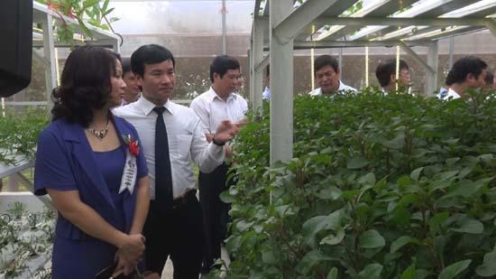 Lễ khai trương khu sinh thái nông nghiệp công nghệ cao Thung lũng Ngọc Linh Hòa Lạc