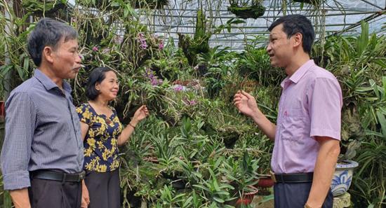 Hiệu quả từ nguồn vốn ngân sách huyện Thạch Thất ủy thác qua Ngân hàng Chính sách xã hội
