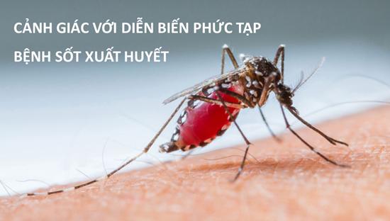 Tăng cường phòng, chống dịch sốt xuất huyết và tay- chân- miệng