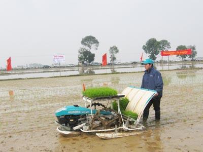 Hội nghị đầu bờ về áp dụng cơ giới hóa trong sản xuất vụ xuân 2014 tại xã Đại Đồng.