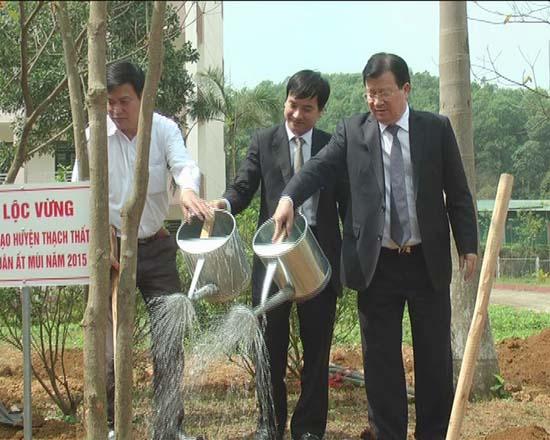 Bộ Xây dựng, trường Đại học Quốc gia Hà Nội và huyện Thạch Thất tổ chức lễ phát động tết trồng cây xuân Ất Mùi 2015.