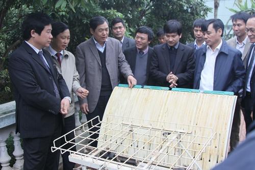 Công nghệ gieo mạ khay, cấy bằng máy áp dụng trong sản xuất nông nghiệp ở huyện Thạch Thất