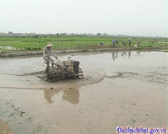 Xã Dị Nậu- huyện Thạch Thất tiếp tục tập trung chỉ đạo công tác dồn  điền đổi thửa.