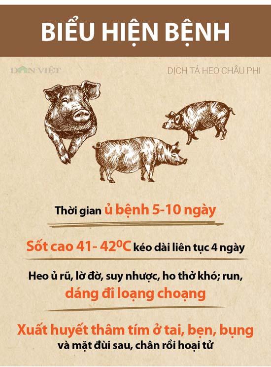 Chỉ thị của Ban Bí thư về tăng cường phòng, chống, khống chế hiệu quả dịch tả lợn châu Phi