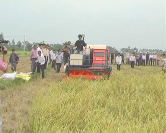 Nhìn lại 5 năm phát triển của ngành nông nghiệp huyện Thạch Thất khi sát nhập về Thủ đô Hà Nội